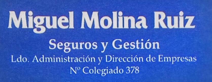 SEGUROS MIGUEL MOLINA