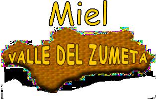MIEL VALLE DEL ZUMETA